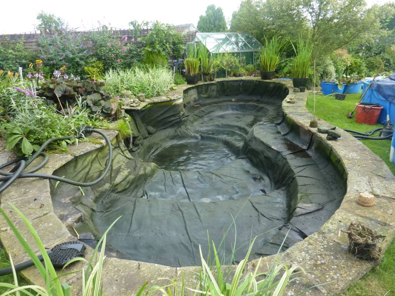 Pond cleaning carpvale north yorkshire 39 s finest for Pond cleaning fish