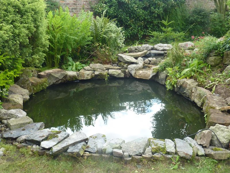 pond cleaning carpvale north yorkshire s finest fishing lakes