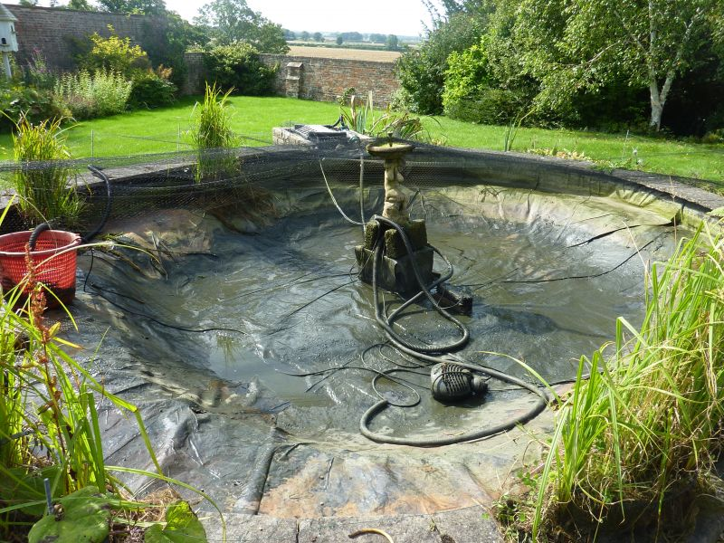 Carpvale photos carpvale for Koi pond maintenance near me